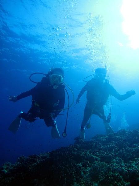 $Audrey Diving Service ~海日誌~-沖縄ダイビング
