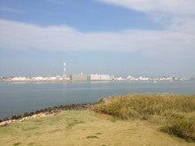 大阪 海さくら 事務局のブログ-風景