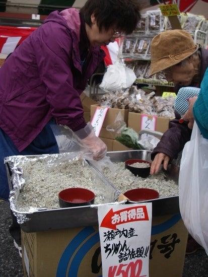 松戸南部市場-maturi9