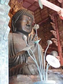 おっどあい猫の碧い目紅い目ぶろぐ-東大寺盧舎那仏像