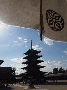 おっどあい猫の碧い目紅い目ぶろぐ-奈良法隆寺五重の塔と幕