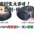 髪の毛は血液だ(3)