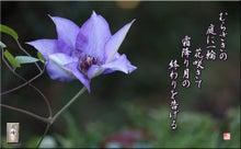 フォト短歌Amebaブログ-フォト短歌「一輪の花」