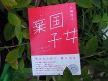 つきこの湘南・もの書き日記