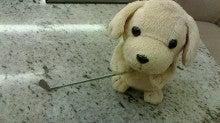 梅沢富美男オフィシャルブログ「親父ブログふたたび」by Ameba-2013112920210000.jpg