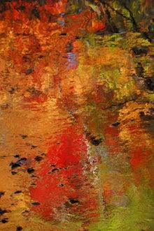 川面の紅葉2