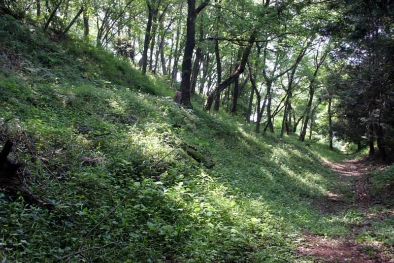 山上城/外周の堀跡