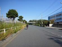 シゲじいのブログ(店長日記~シゲじいの独り言~)