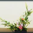 *今回のお花 〜クレ…