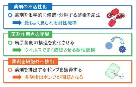 東京マイクロスコープ顕微鏡歯科☆オーラルハイジニストnaomi