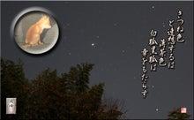 フォト短歌Amebaブログ-フォト短歌「黒ぎつね」