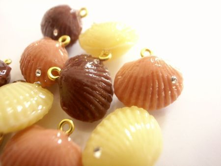 貝殻チョコレート