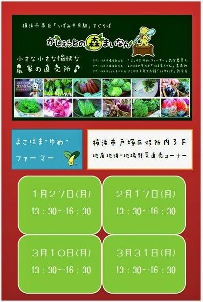 「 がじぇっとの森まいなん 」  横浜市泉区 いずみ中央駅すぐそば (^^)/ 愉快な農家の直売所♪