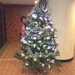 クリスマスツリーから