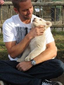 ポール・ウォーカー犬
