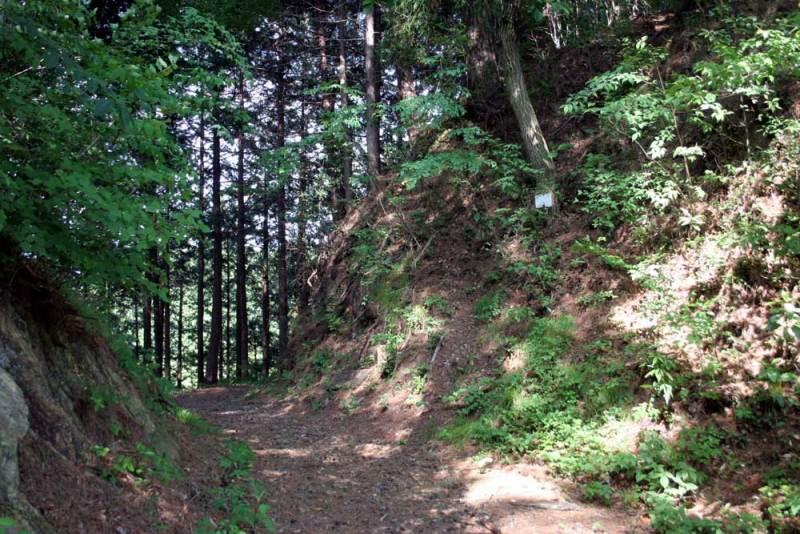 桐生城/三の丸の堀切