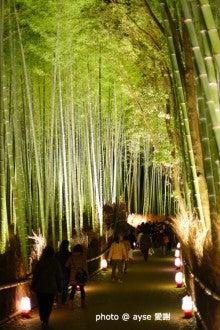 京都 嵐山 花灯路