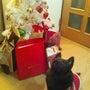メリークリスマスイブ…
