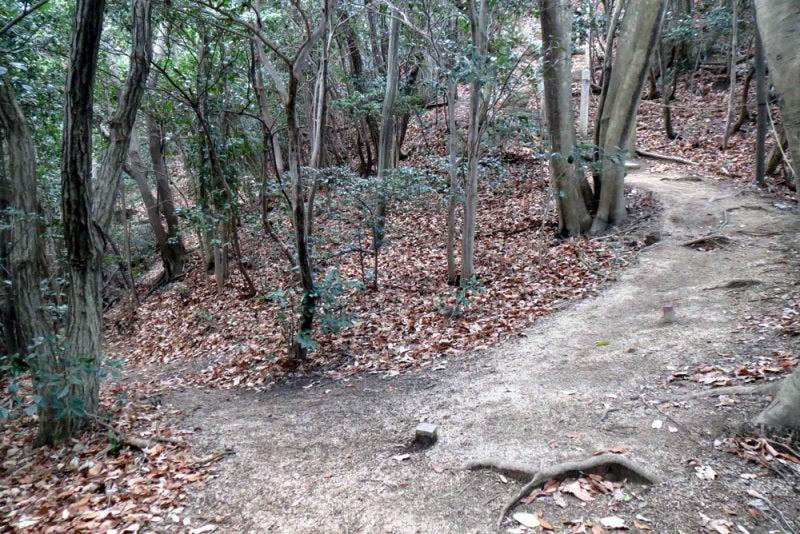 馬ヶ岳城/⑬東の峰をパスする道