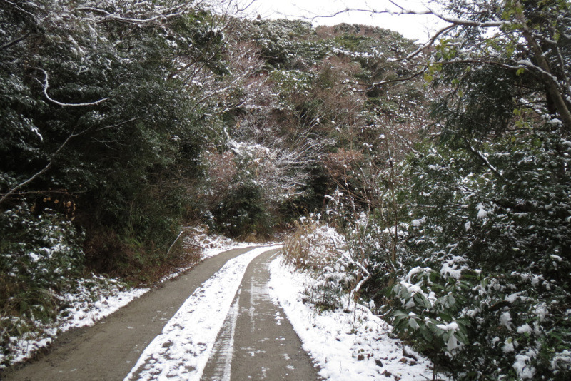 鷹取城/④だんだん雪道に