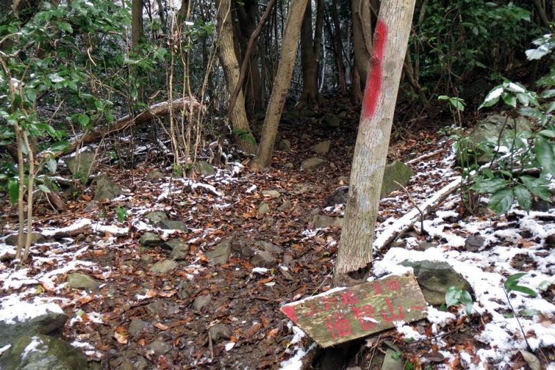 鷹取城/⑤林道から登山道へ