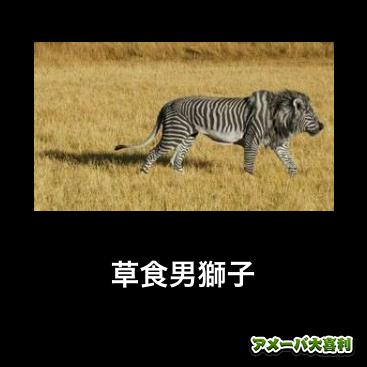 草食男獅子