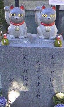 今戸神社の猫