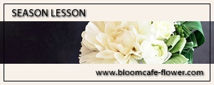 BLOOM CAFE SEASON LESSONへ