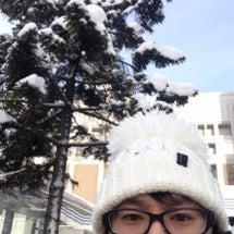 今日から札幌です!