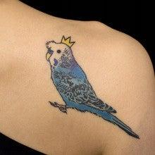 セキセイインコのタトゥーBlue bird tattoo