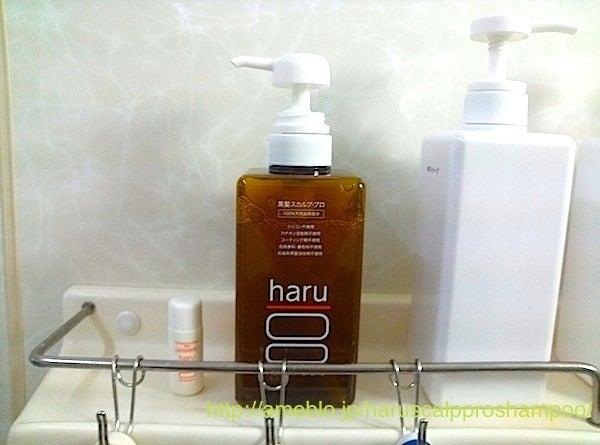 haru黒髪スカルププロの使用感レビュー