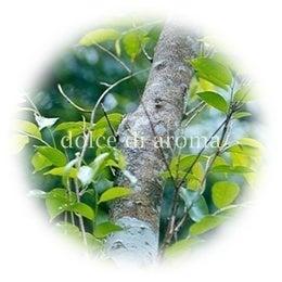 $アロマで癒しのひととき♪荻窪の隠れ家サロン-ドルチェディアロマ