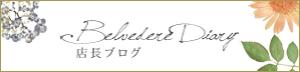 Belvedere Diary