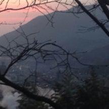 朝の風景、高崎山!