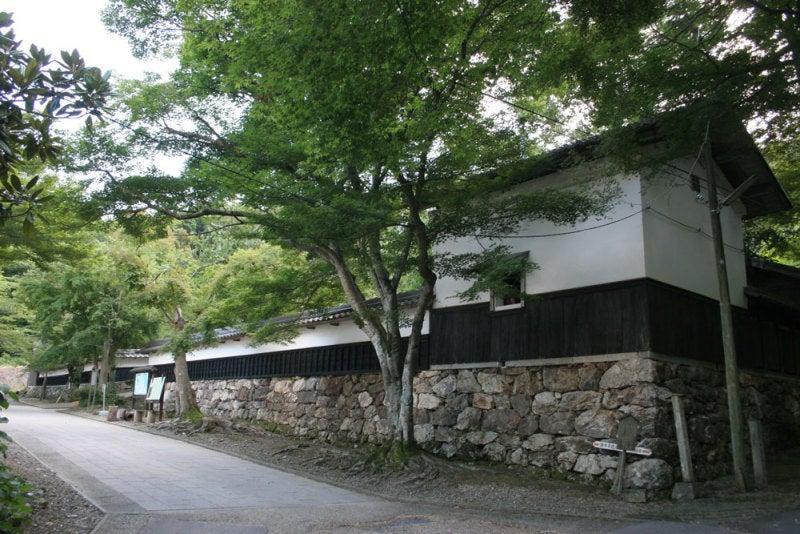 柏原城/01石垣と櫓