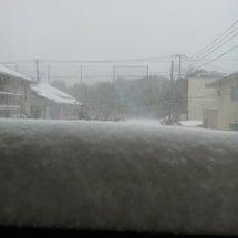 まともに、吹雪だよ