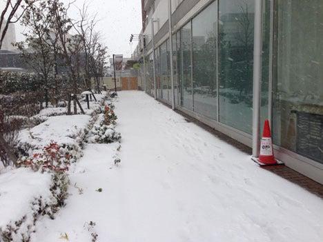 2月の大雪3