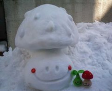 SNOWAMU