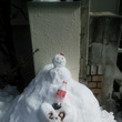 東京も大雪