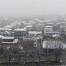 <注意喚起>雪の日の…