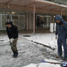 雪に降られて・・・