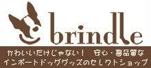 $brindle店長 makikoのわんとーくブログ-バナー