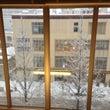 お店からの雪景色