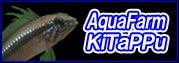 Aqua Farm きたっぷ