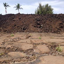 ハワイ島 ブログ ペトログリフ