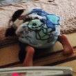 個人練習in高円寺