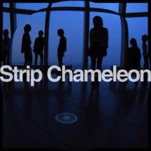 Strip Chameleon