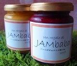 JAMba1