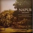 『NAPUR ナピュ…