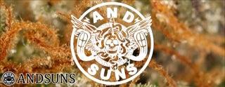 ANDSUNS (アンドサンズ)